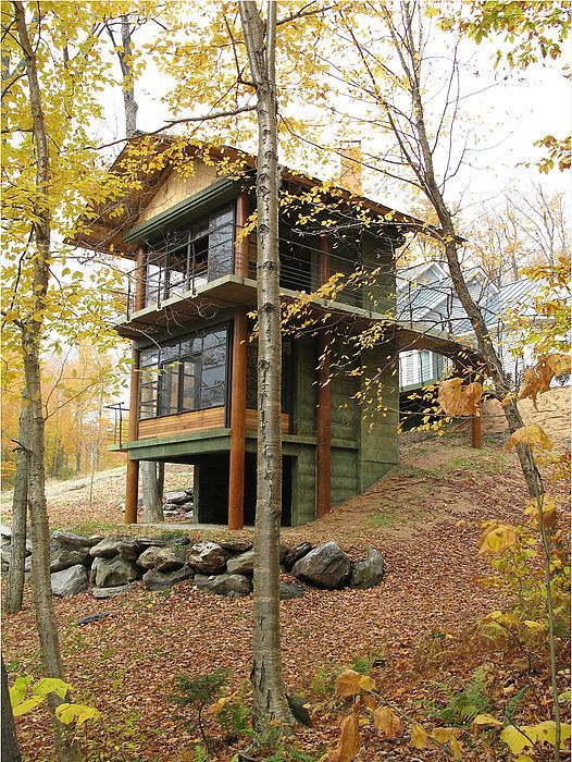 Tree House Plans For Two Trees best 25+ architectural trees ideas that you will like on pinterest