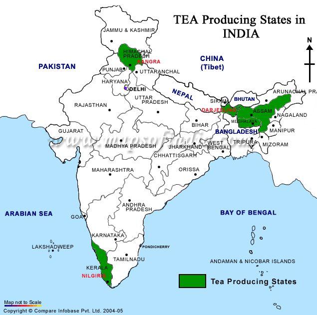 India's Tea Producing States