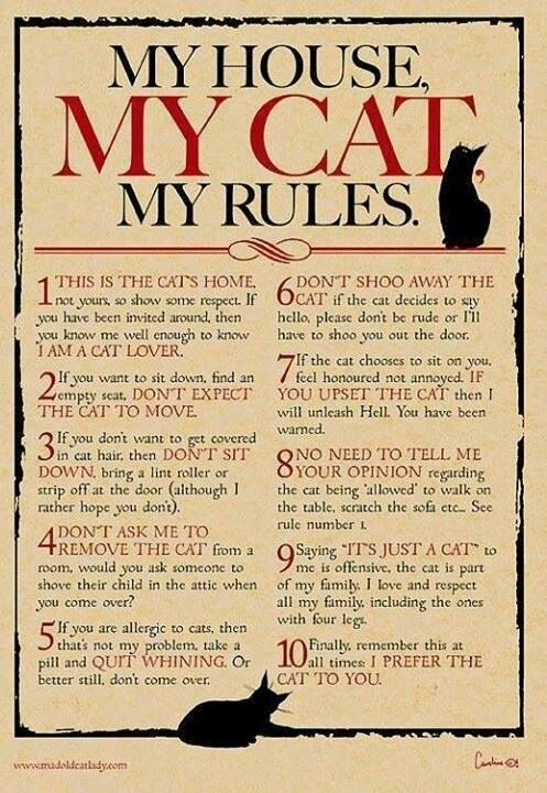 OMG! 6 AND 7 SOOOOOOO TRUE - What more to say other than we just LOVE cool stuff!