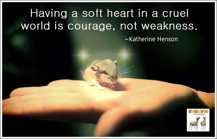 Having A Soft Heart In This Cruel World Is Courage Not: Soft Heart Quotes. QuotesGram