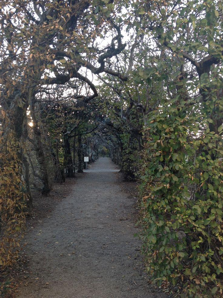 FAI  - Villa Panza, Varese, Italy - with #liadesign www.liadesign.it    #villapanza #FAI #fondoambiente #autumn