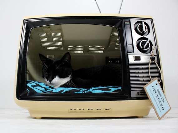 DIY : une couchette pour tous les chats geeks