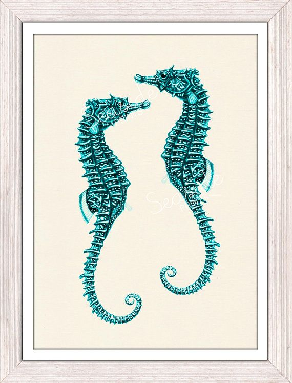 Sealife seafoam sea horses couple-Sealife  Wall decor poster- bathroom wall decoration- A4 art print