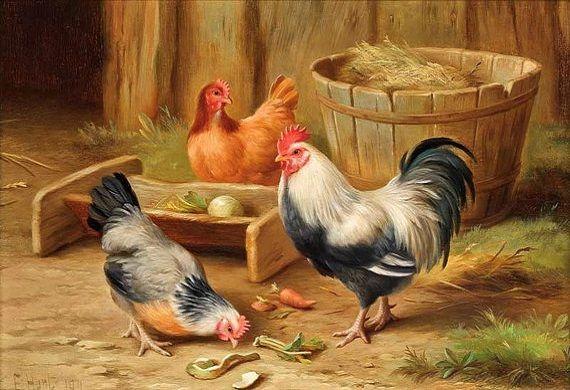 Feathered Friends (Edgar Hunt)