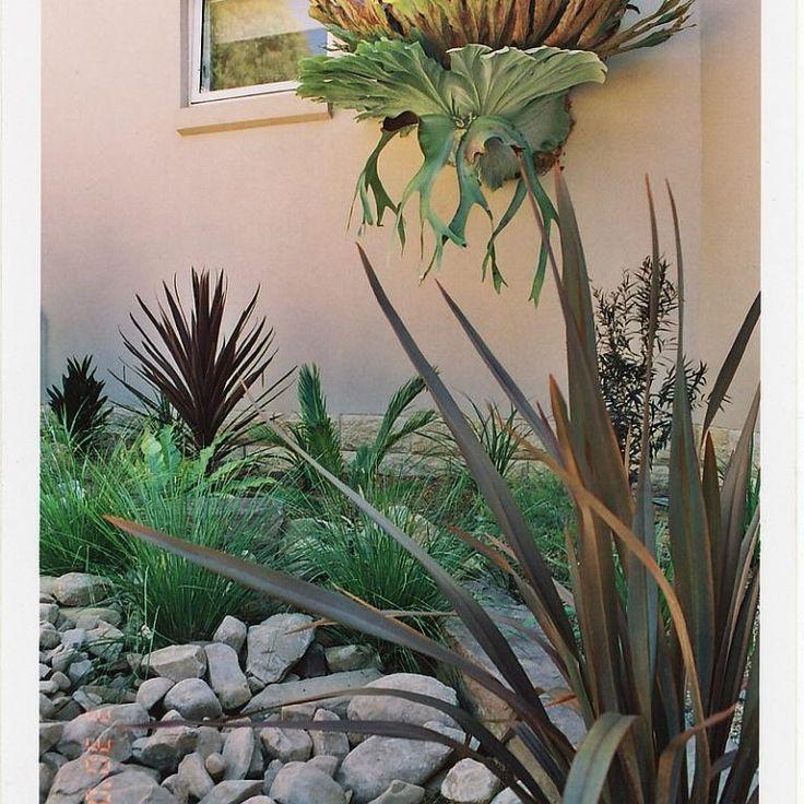 Gardens Inspiration - Hurricane Landscapes Pty Ltd - Australia | hipages.com.au