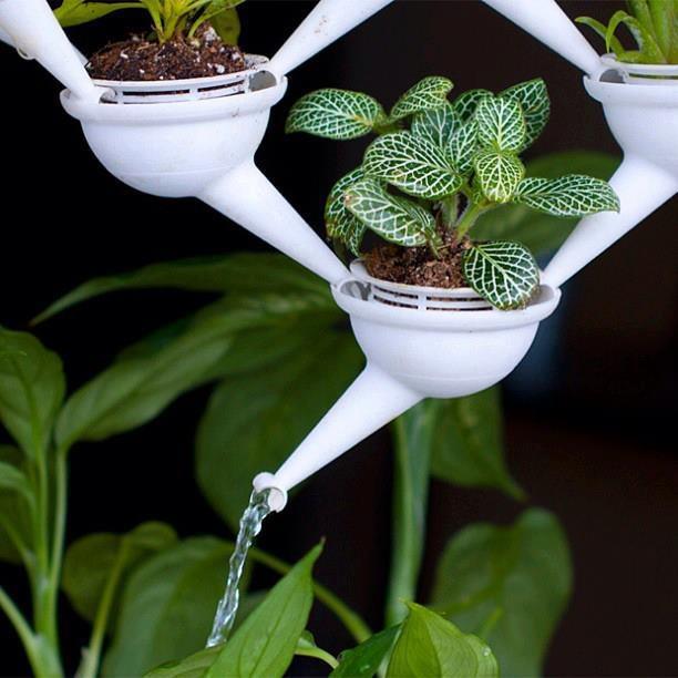 30 besten bew sserung geniale ideen bilder auf pinterest hochwertig leitungswasser und pflanzen. Black Bedroom Furniture Sets. Home Design Ideas
