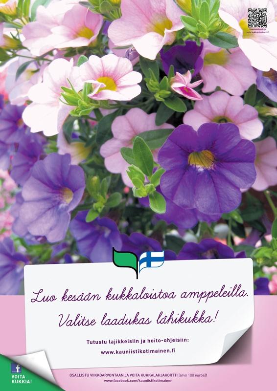 Kauniisti kotimainen - Luo kesään kukkaloistoa amppeleilla! 2012
