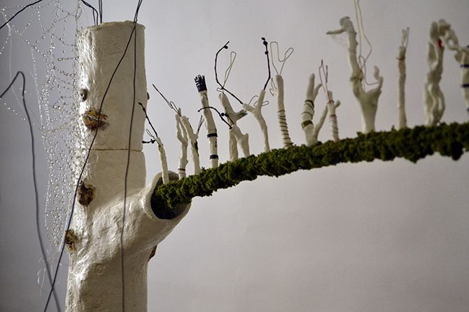 """Proyecto presentado en la exposición """"La piel de los árboles II Edición"""" 2014. Comisariado por Rafael Martorell, Sala Aula de la Naturaleza, Jardín Botánico. Parque de la Asomadilla. Córdoba. Medid..."""