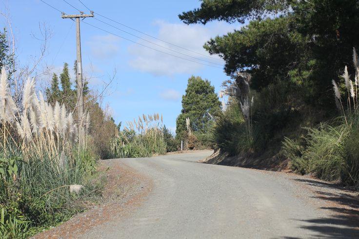 Dirt road in Kohukohu