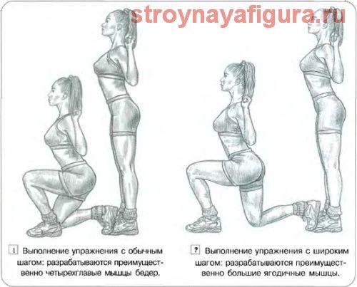Мощнейшее упражнение для округлости ягодиц! Выпады – это мощнейшее упражнение для ягодиц (большой ягодичной мышцы и двуглавой мышцы), оно реально целенаправленно бомбит именно эту область вашей фигуры и придает им отчетливую форму шара (ореха), т.е. то, что особенно интересует как ЖЕНЩИН/ДЕВУШЕК, так и мужчин, в какой-то степени тоже. Поэтому выпады актуальны для всех без исключения. Так же помимо задних мышц в работу активно включается четырехглавые мышцы бедра (вся передняя и отчасти…