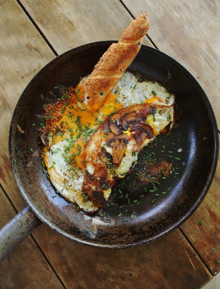 Gomba és tojás • Fördős Zé Magazin