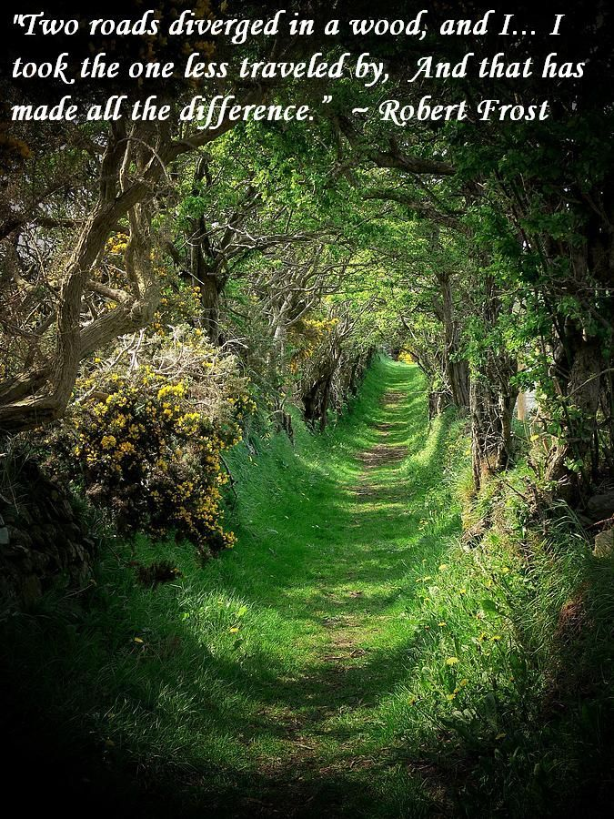 """to choose between two roads in the road not taken by robert frost It describes the difficulties of a traveler who has to choose between two diverging roads frost uses the """"the road not taken"""" by robert frost is a closed."""