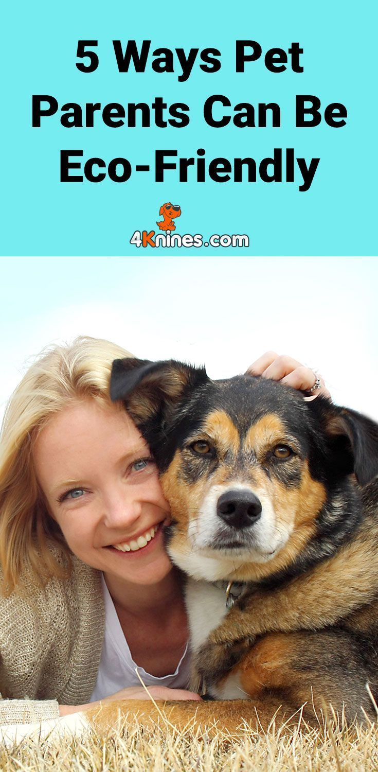 5 Ways Pet Parents Can Be Eco Friendly In 2020 Pet Parent Pets Pet Mom