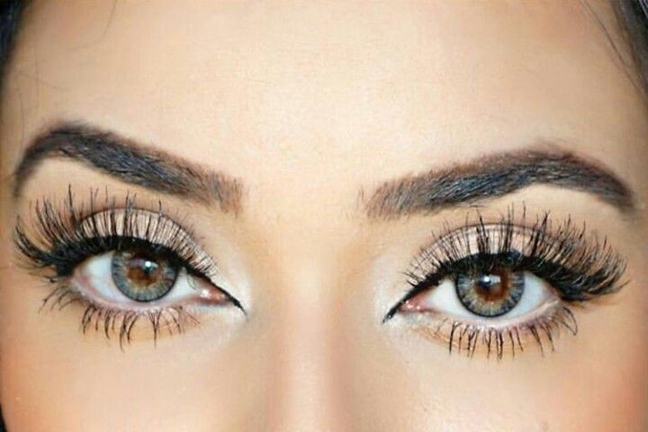 Koko Lashes in 'SoHo' | LashAddicted | Pinterest | Koko ...