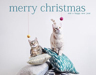 """Check out new work on my @Behance portfolio: """"merry christmas"""" http://be.net/gallery/46680207/merry-christmas"""