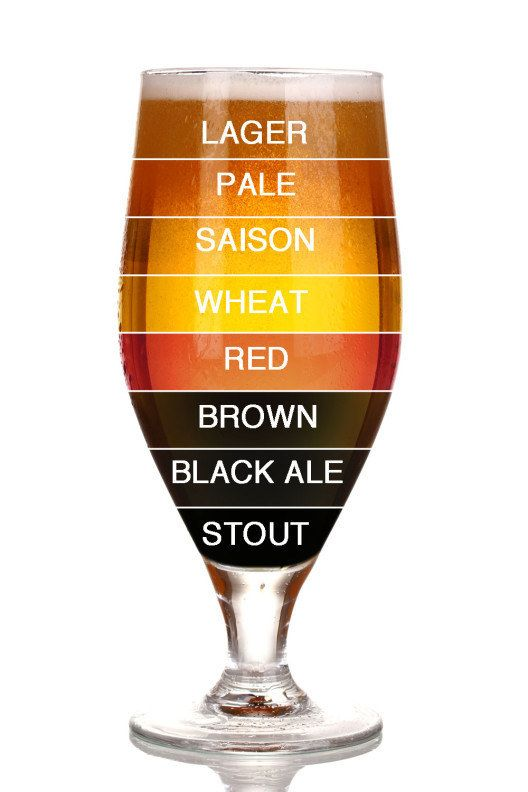 Eight shades of beer.