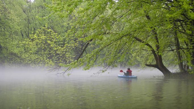Réserve mondiale de la biosphère du Lac St-Pierre (Biophare)