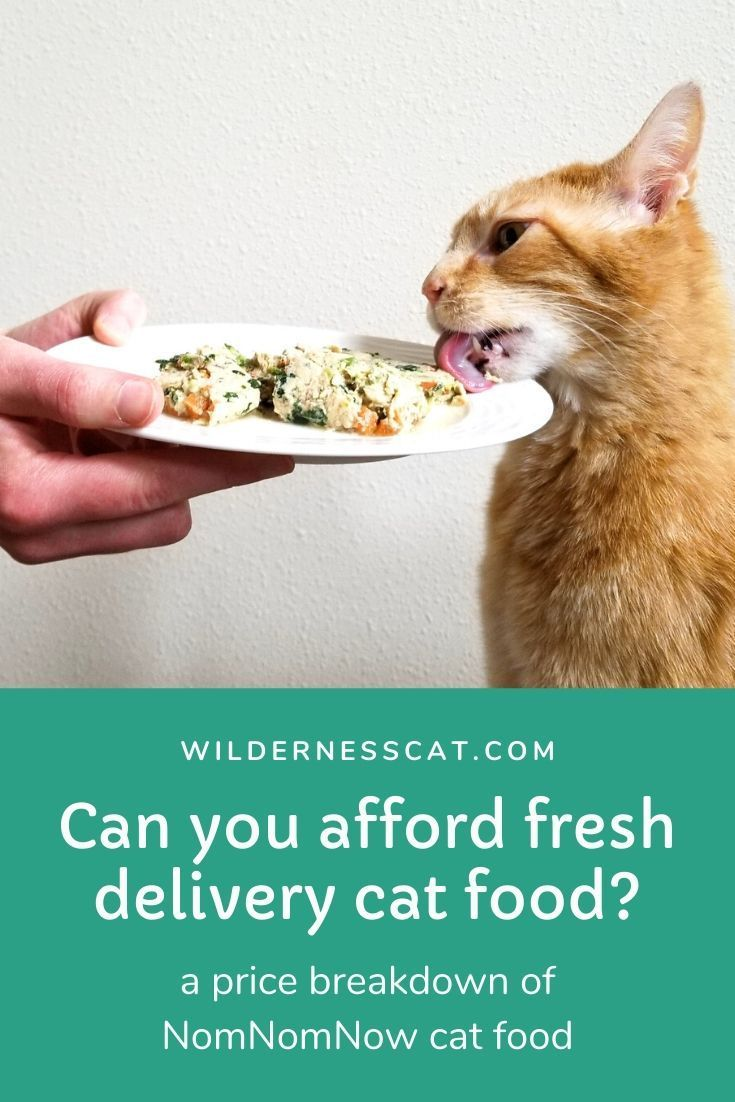 How Much Does Nom Nom Cat Food Cost In 2020 Cat Food Raw Cat