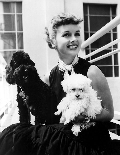 Debbie Reynolds and her dogs.     NAME: Debbie Reynolds OCCUPATION: Film Actress, Singer BIRTH DATE: April 01, 1932 (Age: 80) PLACE OF BIRTH: El Paso, Texas ORIGINALLY: Mary Frances Reynolds ZODIAC SIGN: Aries less about Debbie BEST KNOWN FOR  Known for her boundless energy and pert demeanor, Reynolds' most memorable turn was in the 1952 musical Singin' in the Rain.