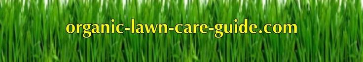 Calendar for organic lawn care