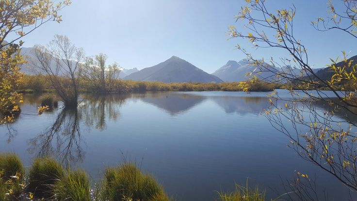 Glenorchy lagoon walk...it's free and simply stunning. Take the 45 minute journey from Queenstown along one of the most scenic roads I  the South Island.