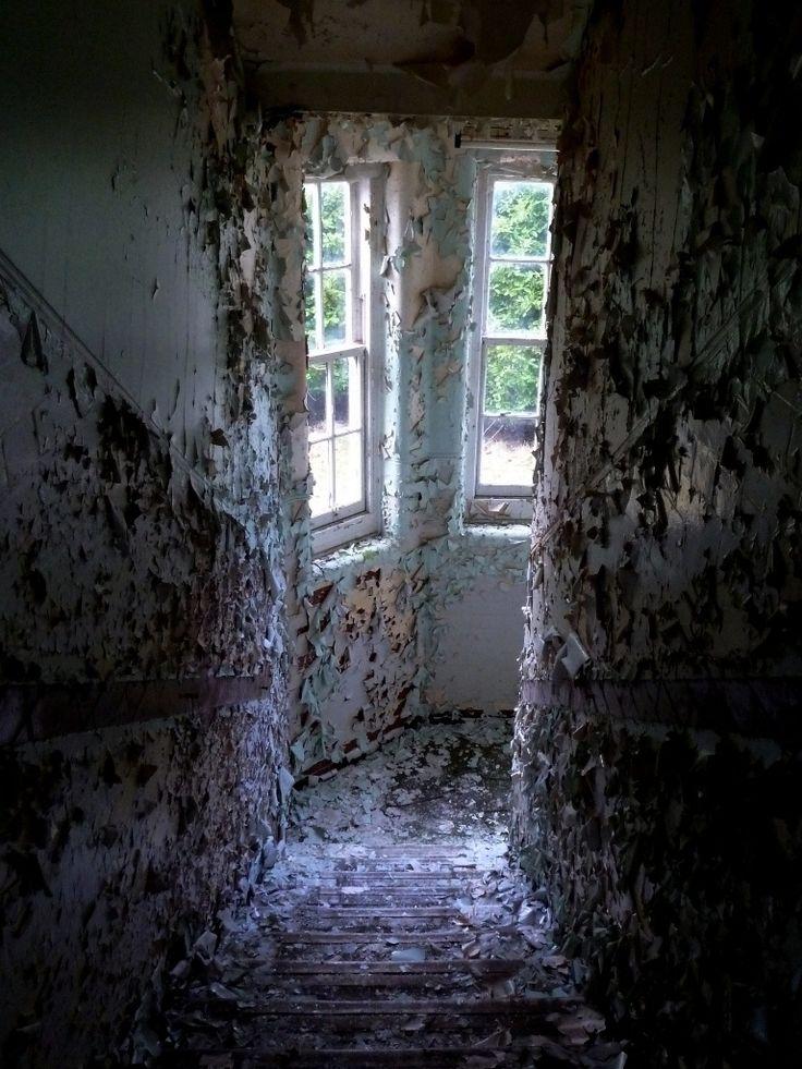 Report - Severalls Asylum, Colchester - February 2013