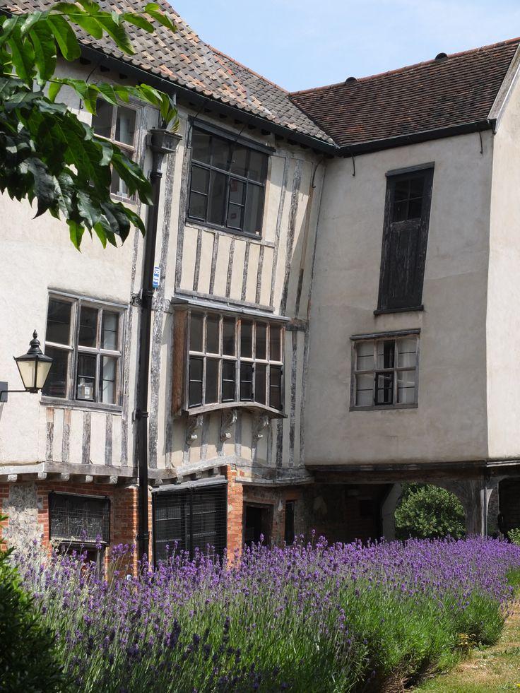 Lavender - Tombland Alley
