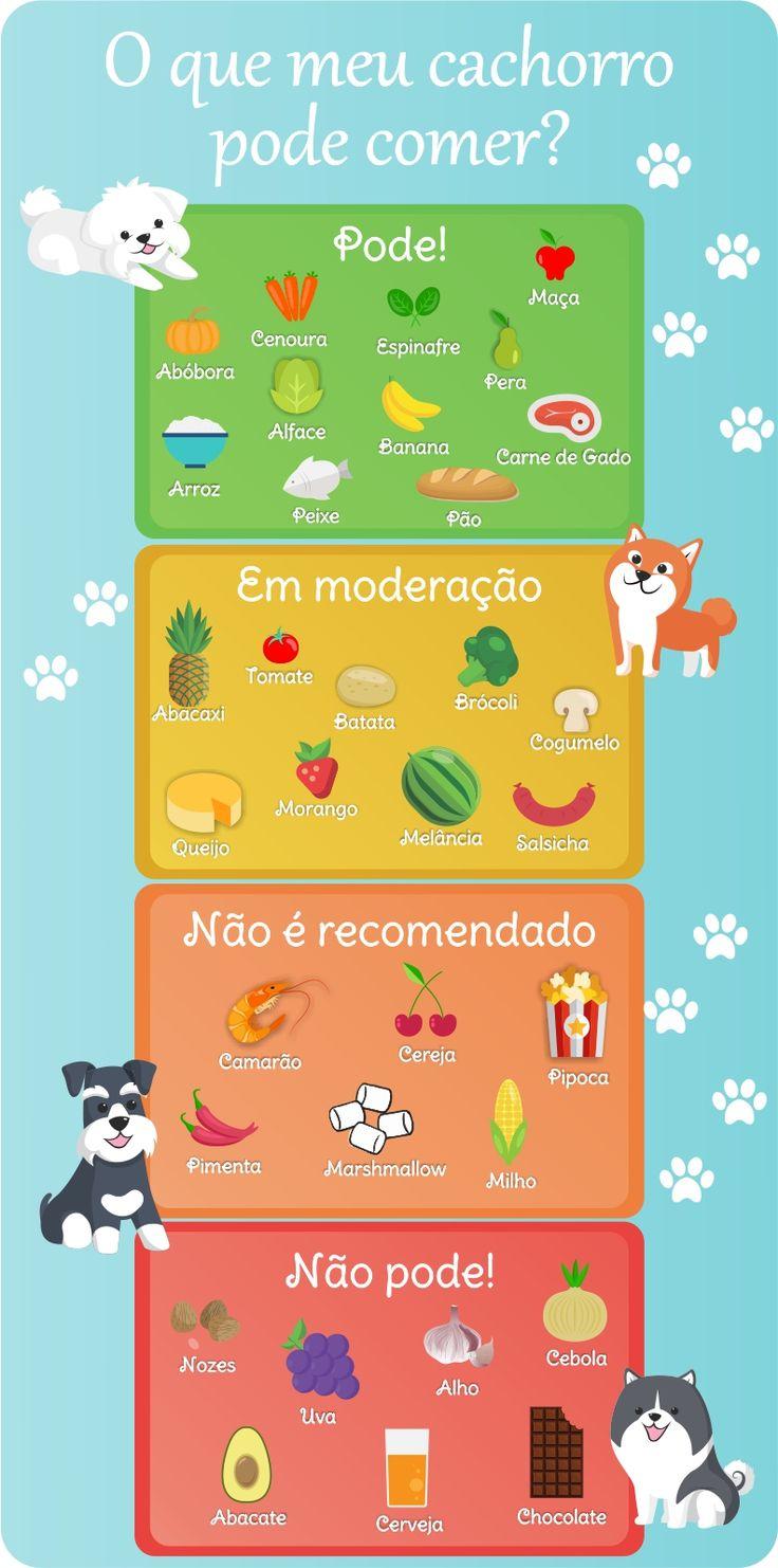 O que meu cachorro pode comer? | Pets | Blog | O Vermelhinho