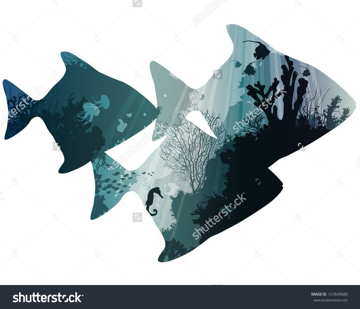 silhouettes of tropical fish. within the seabed with coral and marine life. white background, vector illustration