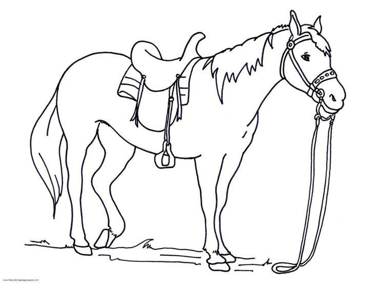 coloringrocks in 2020  ausmalbilder pferde malvorlagen