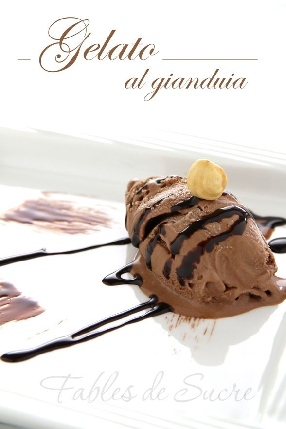 Just shoot me now.... gelato al gianduia. Heaven on earth