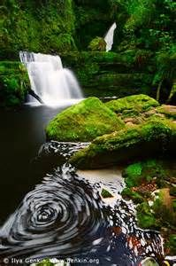 the catlins new zealand - Bing images