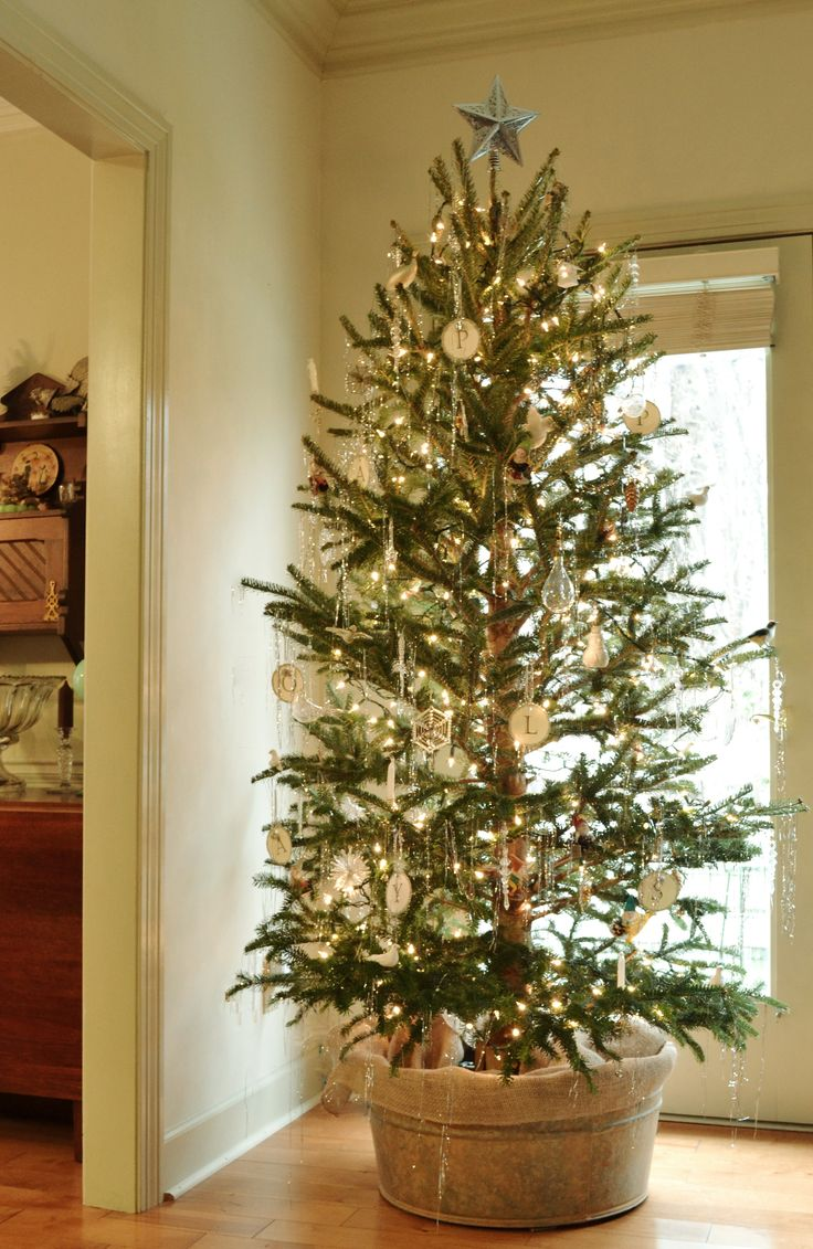 Best 25+ Christmas tree farms ideas on Pinterest | Christmas tree ...