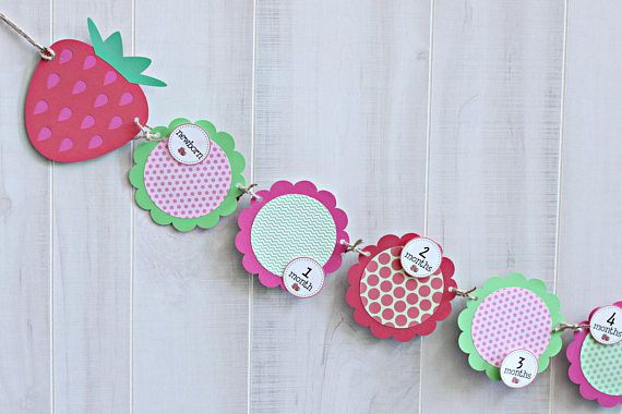 Strawberry Monthly Photo Banner - Strawberry Shortcake 1st Birthday 12 Month Photo Banner - Strawberry Party Banner
