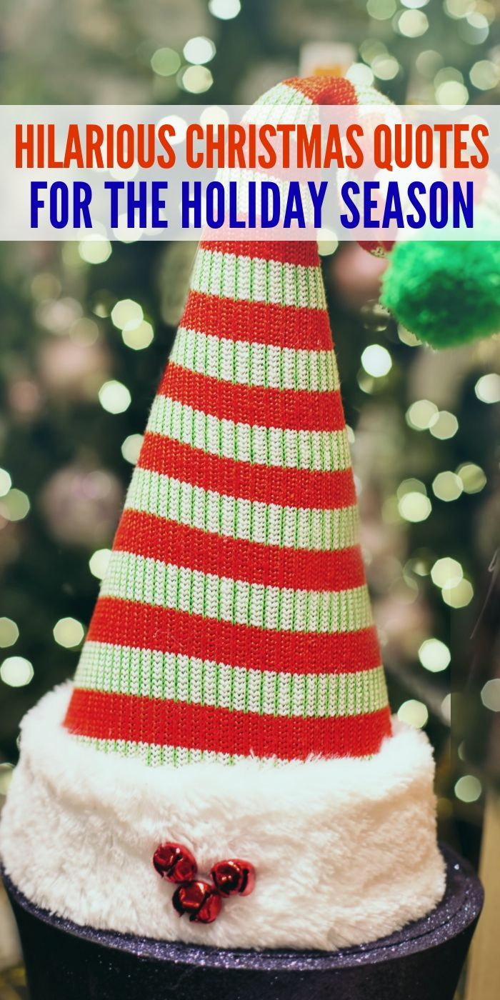 Hilarious Christmas Quotes To Kick Off The Holiday Season Christmas Quotes Funny Christmas Cheer Quotes Holiday Season Quotes