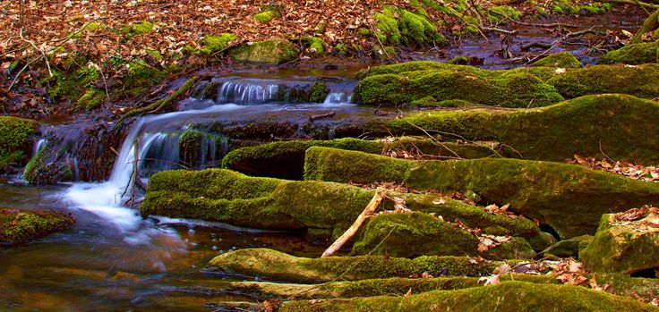 Stream by Hubert Müller on 500px