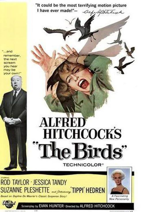 The Birds (1963)  Wealthy reformed party girl Melanie Daniels enjoys a brief flirtation with lawyer Mitch Brenner in a San Francisco pet shop and decides to follow him to his Bodega Bay home. Bearing a gift of two lovebirds, Melanie quickly strikes up a romance with Mitch while contending with his possessive mother and boarding at his ex-girlfriend's house.