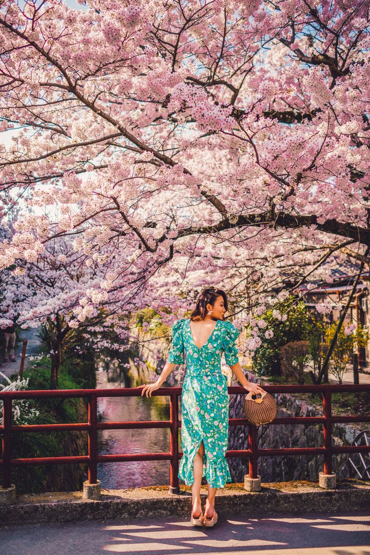 7 Best Spots For Cherry Blossoms In Japan Kyoto Philosopher Path Luxury Travel Blogger Notjessfa Cherry Blossom Japan Spring Outfits Japan Japan Spring