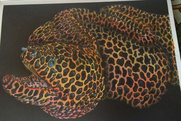 Moray Eel By Zonia Lorena R