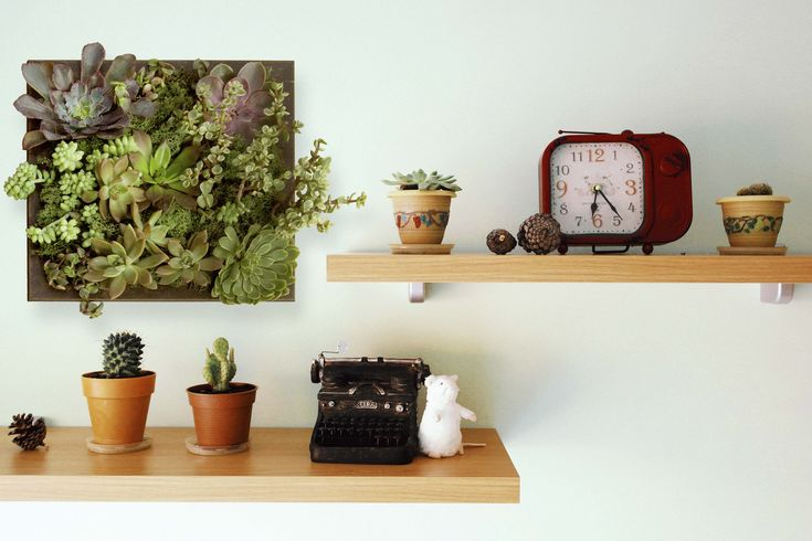 No green thumb? Never fear! Learn how to create this easy do-it-yourself succulent planter from one of our deep picture frames. Place on the wall or table.