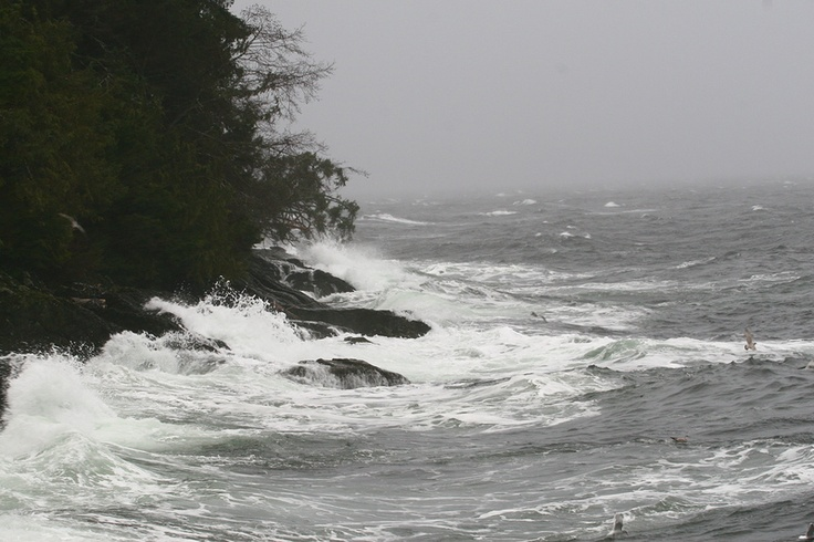 SE Alaska