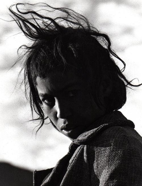 Herbert Maeder – Risa, ein 15jähriger Touareg-Junge, Algerien, 1970