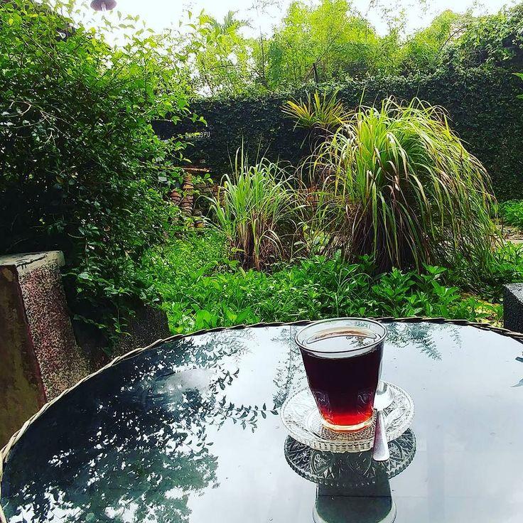 Ada aroma sereh (karena di depan ada  pohon sereh). Beginilah ngopi di warung kopi tanpa plang @omertakoffie. Langganan lama. Seperti ngopi di beranda sendiri. Rintik-rintik pula... . Coffee in frame from my hometown (father's side): #Mandailing Ulu Pungkut. Kesegaran macam berenang di Sei Gadis lah pokoknya!  Ini @cakbrewok mana? Hehe . # #kopi #coffee #coffeetime #Indonesia