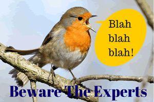 Beware of Experts