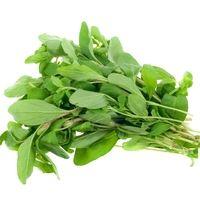 Marjolaine (Origanum majorana) : propriétés, bienfaits de cette plante en phytothérapie - Doctissimo