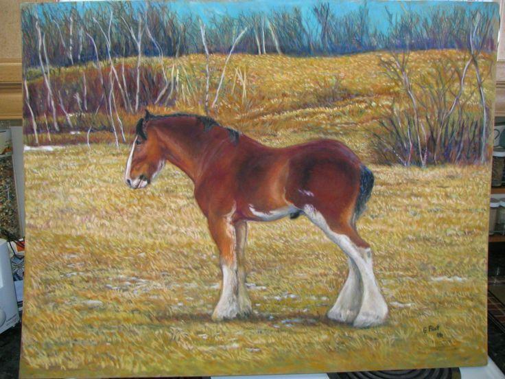 Clydsdale on baseline road.  Pastel on Suede board.  Artist Gail Flint