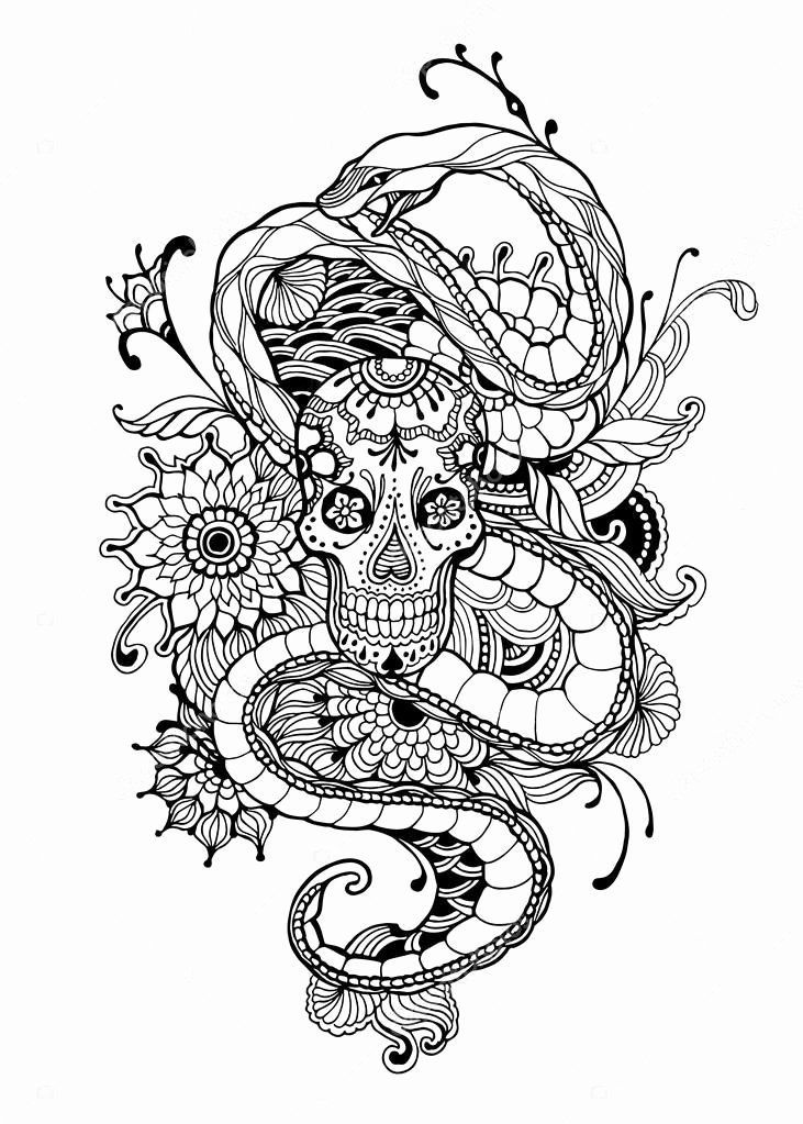 Pin By Tabeen Fatima On Coloring Pages In 2020 Tattoo Coloring Book Skull Coloring Pages Snake Coloring Pages