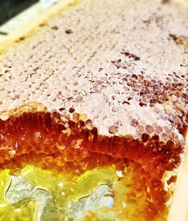#homemade #honey #photo by #iphone #austria #honey #bio # quality
