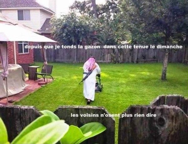 La tonte de la pelouse...