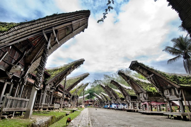 Tanah Toraja by Sharen Adeline